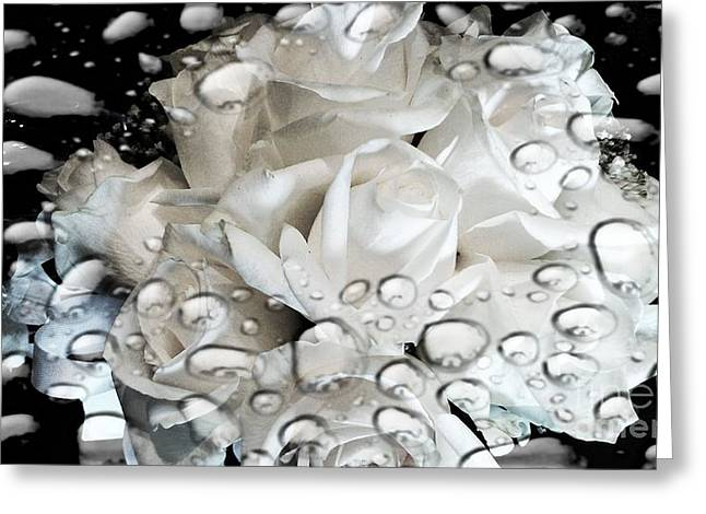 Frizzell Greeting Cards - White Roses Greeting Card by Michelle Frizzell-Thompson