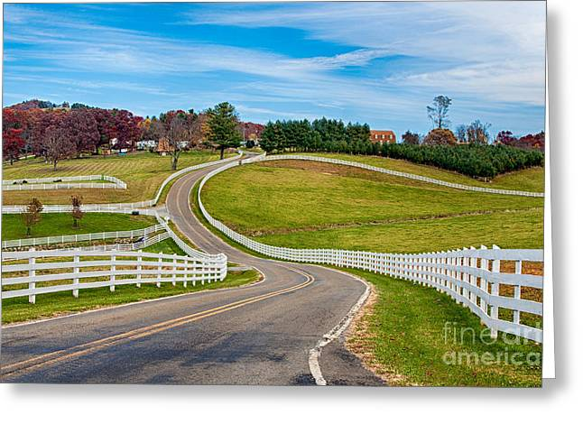 Sparta Greeting Cards - White Running Fence I Greeting Card by Dan Carmichael
