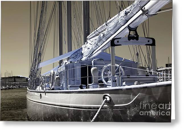 Sailboat Photos Greeting Cards - White Sail Greeting Card by John Rizzuto