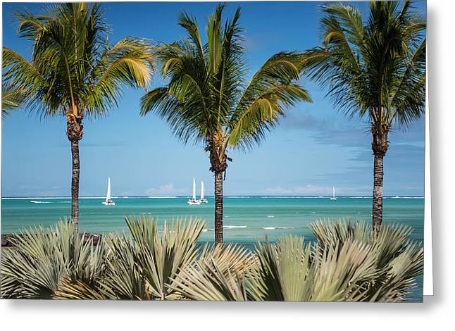 Best Ocean Photography Greeting Cards - White Sails. Mauritius Greeting Card by Jenny Rainbow