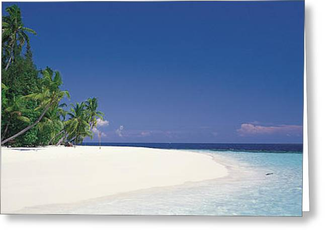 Panoramic Ocean Greeting Cards - White Sand Beach Maldives Greeting Card by Panoramic Images