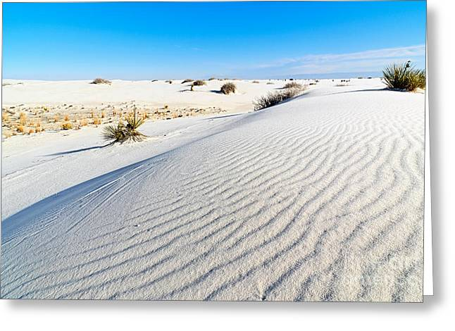 White Sands - Morning View White Sands National Monument In New Mexico. Greeting Card by Jamie Pham
