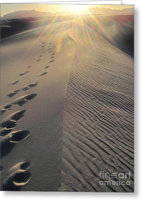 White Sands New Mexico Footsteps In The Sand Greeting Card by Gregory Dyer