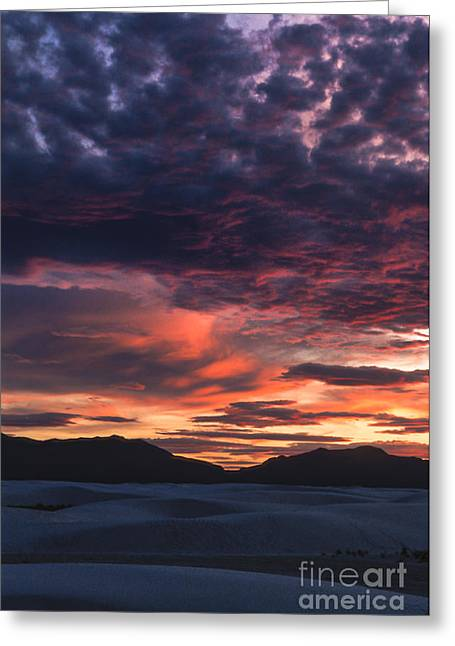 Backlit Greeting Cards - White Sands Sunset Greeting Card by Sandra Bronstein