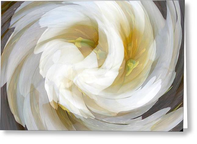White Digital Greeting Cards - White Satin Swirl Greeting Card by BackHome Images
