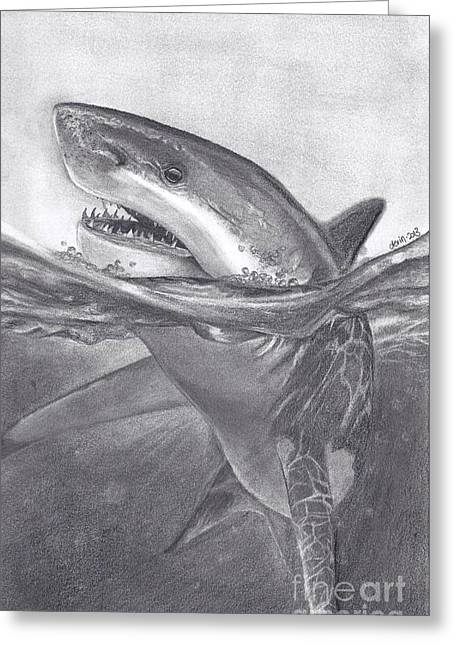 White Shark Drawings Greeting Cards - White Shark Greeting Card by Derin Baysal