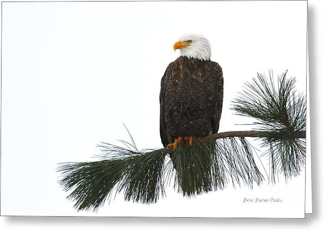 North Idaho Greeting Cards - White Skies and Snow Greeting Card by Reflective Moment Photography And Digital Art Images