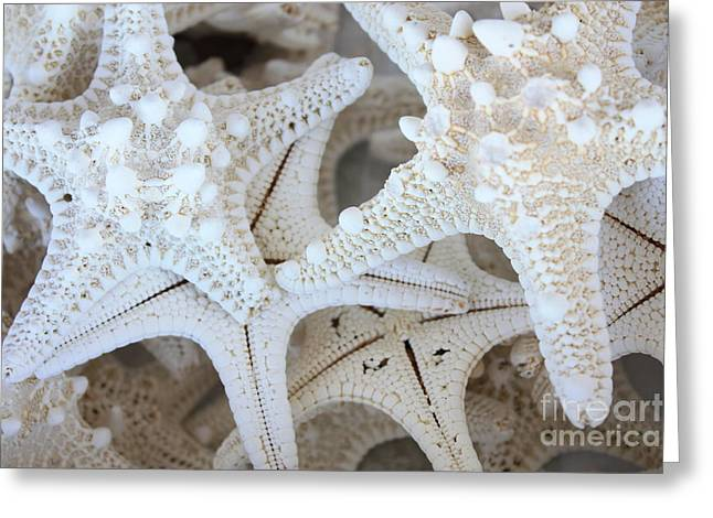 Pattern Photographs Greeting Cards - White Starfish Greeting Card by Carol Groenen