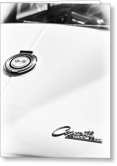 Chevrolet Trunk Greeting Cards - White Sting Ray Greeting Card by Tim Gainey