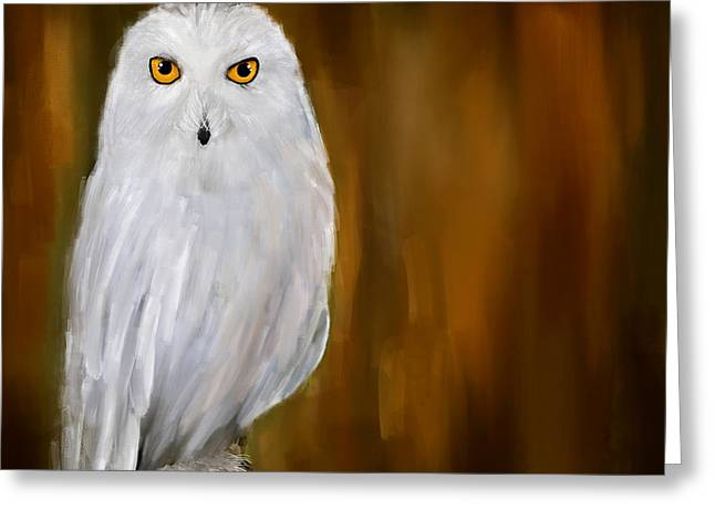 Snowy White Owl Greeting Cards - White Stranger Greeting Card by Lourry Legarde