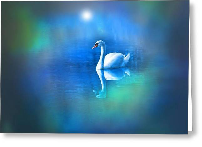Swans... Greeting Cards - White Swan in blue fog Greeting Card by Lilia D