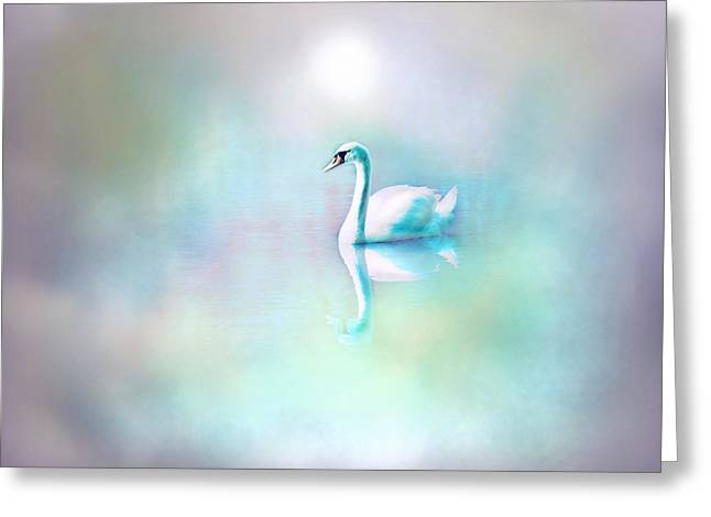 Swans... Greeting Cards - White Swan in the fog Greeting Card by Lilia D