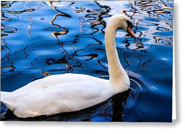 Orange Beak Greeting Cards - White Swan in the Reflective Water Greeting Card by Jenny Rainbow