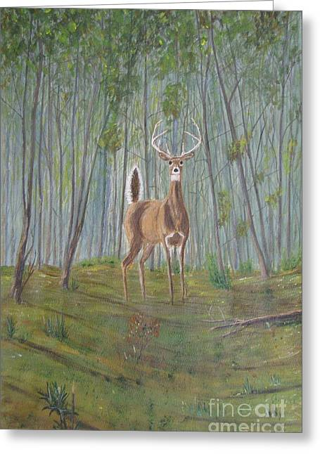 Spring Floods Paintings Greeting Cards - White-tailed Deer - Impressionistic Greeting Card by Dana Carroll