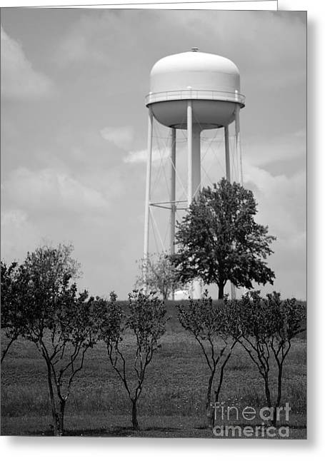 Public Water Supply Greeting Cards - Brenham Texas Watertower Greeting Card by Connie Fox