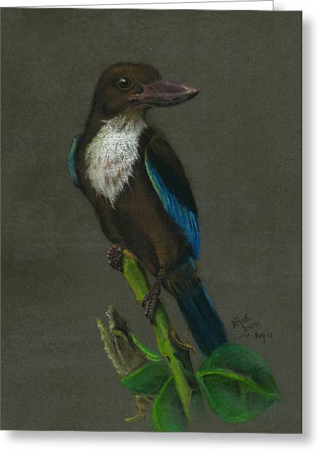 Brook Pastels Greeting Cards - White-Throated Kingfisher Greeting Card by Nirosh Perera