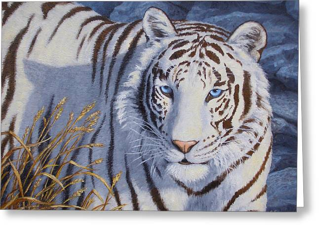 Stripes Greeting Cards - White Tiger - Crystal Eyes Greeting Card by Crista Forest