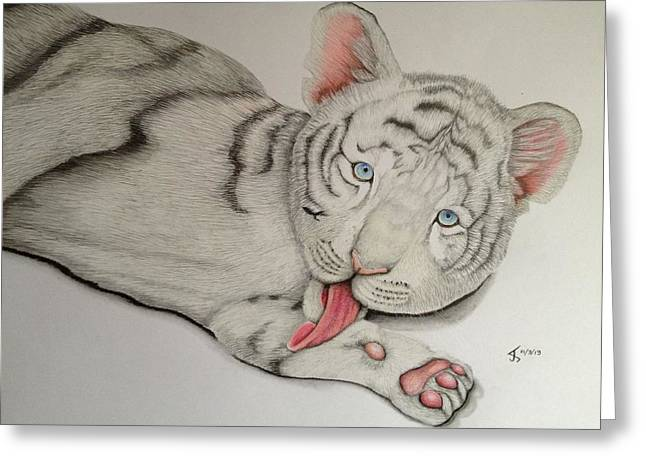 Wild Life Drawings Greeting Cards - White Tiger Cub Greeting Card by Jess Stanley