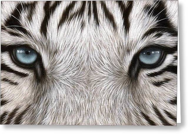 White Paintings Greeting Cards - White Tiger Eyes Painting Greeting Card by Rachel Stribbling