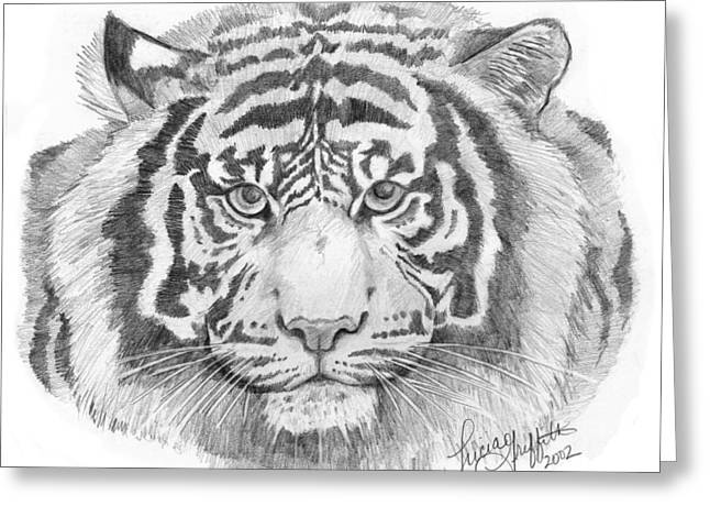 Bengal Drawings Greeting Cards - White Tiger Greeting Card by Tricia Griffith