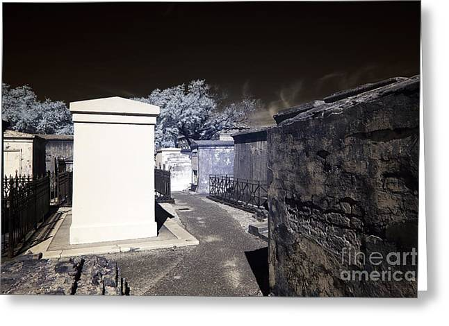 St. Louis Artist Greeting Cards - White Tomb infrared Greeting Card by John Rizzuto