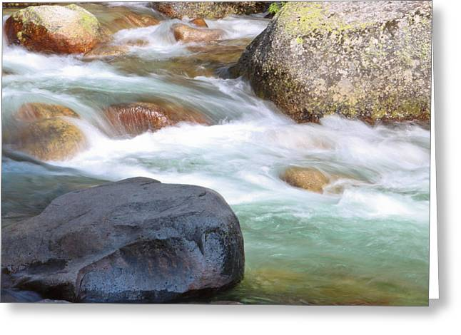 Sequoia Greeting Cards - White Water Greeting Card by Heidi Smith