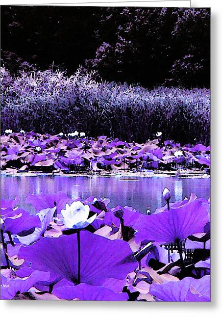 Inverted Color Greeting Cards - White Water Lotus in Violet Greeting Card by Shawna  Rowe