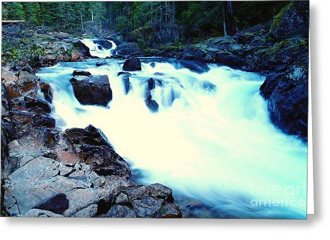 Falling Water Creek Greeting Cards - White Water On The Ohanapecosh River  Greeting Card by Jeff  Swan