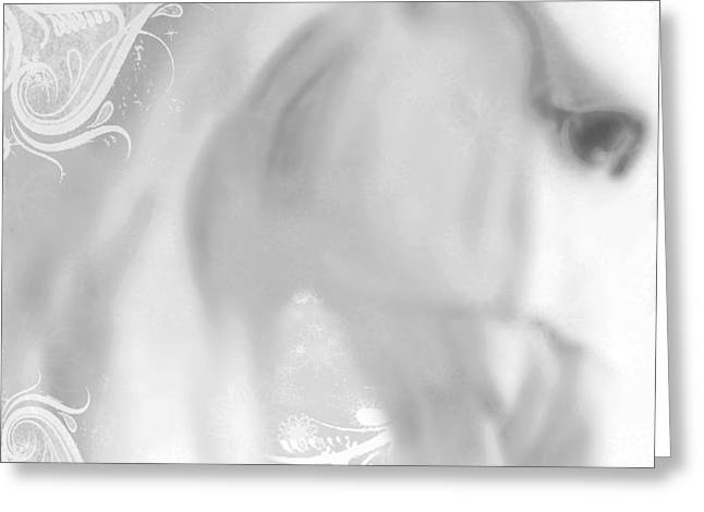 Print On Acrylic Greeting Cards - White Winter Horse 2 Greeting Card by Tony Rubino
