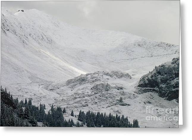 Swiss Photographs Greeting Cards - White Winter Greeting Card by MAK Photography