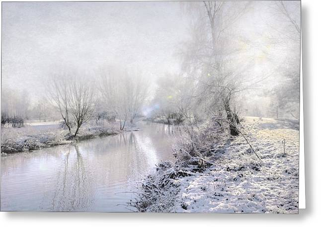 Water Garden Digital Art Greeting Cards - White Winter Greeting Card by Svetlana Sewell