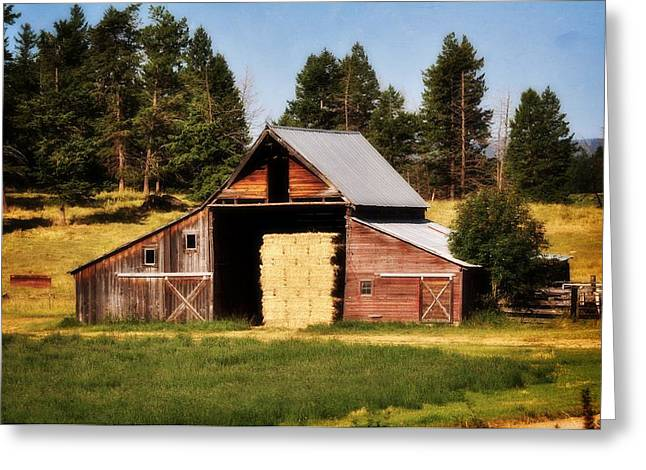 Marty Kcoh Greeting Cards - Whitefish Barn Greeting Card by Marty Koch
