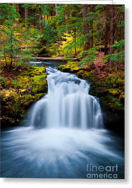 Whitehorse Greeting Cards - Whitehorse Falls Greeting Card by Lois Farrington