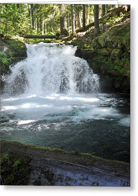 Whitehorse Greeting Cards - Whitehorse falls series 9 Greeting Card by Teri Schuster