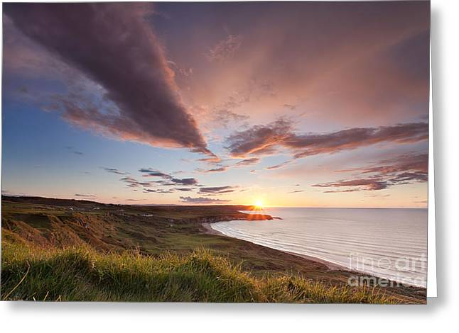 Dune Grass Greeting Cards - Whitepark Bay Greeting Card by Rod McLean