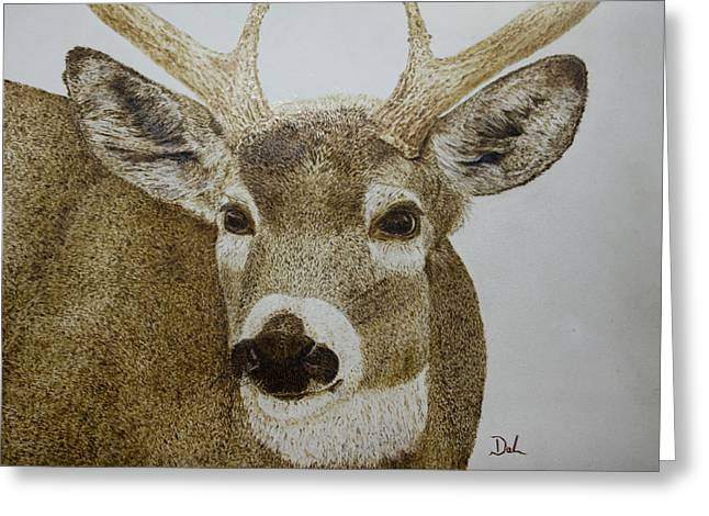 Fur Pyrography Greeting Cards - Whitetail Buck Greeting Card by Dale Bradley