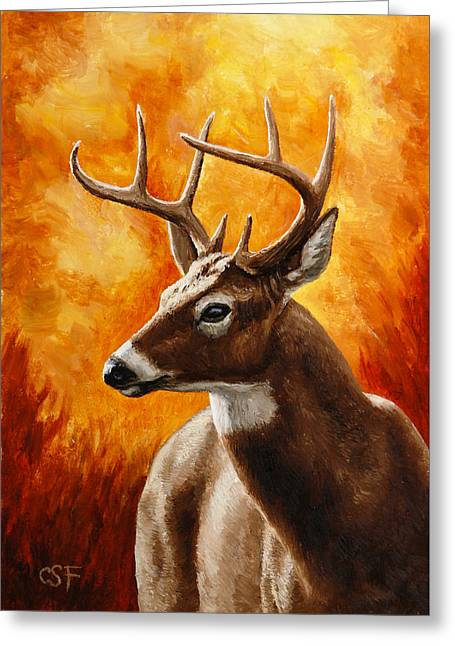 Hunting Trophy Greeting Cards - Whitetail Buck Portrait Greeting Card by Crista Forest