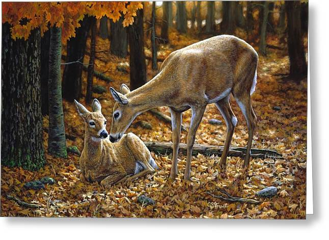 Tails Paintings Greeting Cards - Whitetail Deer - Autumn Innocence 2 Greeting Card by Crista Forest