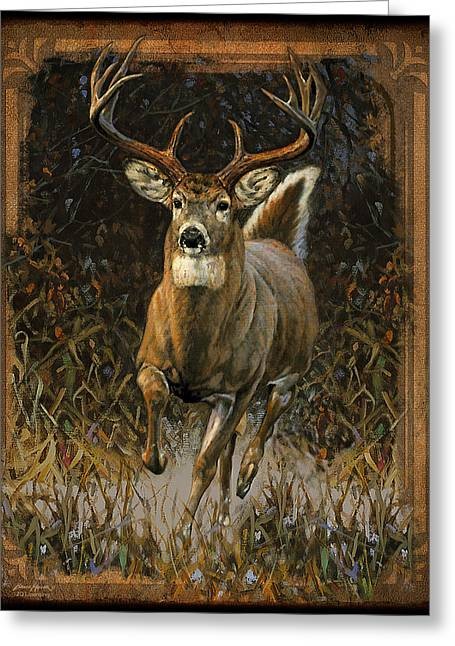 James Paintings Greeting Cards - Whitetail Deer Greeting Card by JQ Licensing