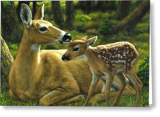 White-tail Deer Greeting Cards - Whitetail Deer - First Spring - Square Greeting Card by Crista Forest