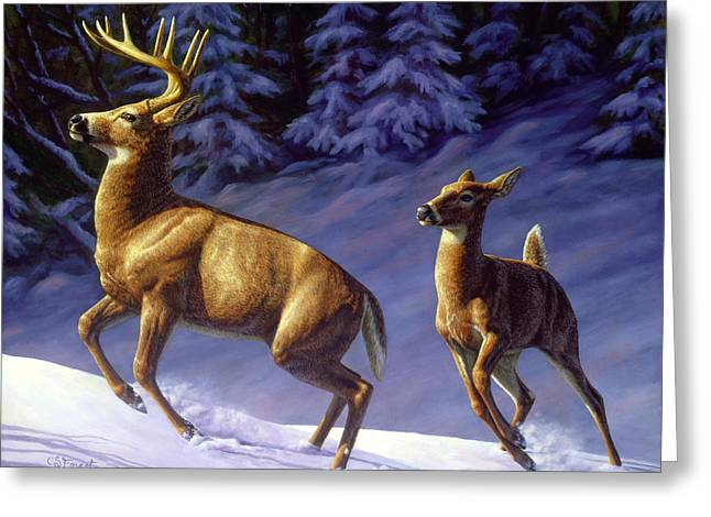 Whitetail Deer Painting - Startled Greeting Card by Crista Forest