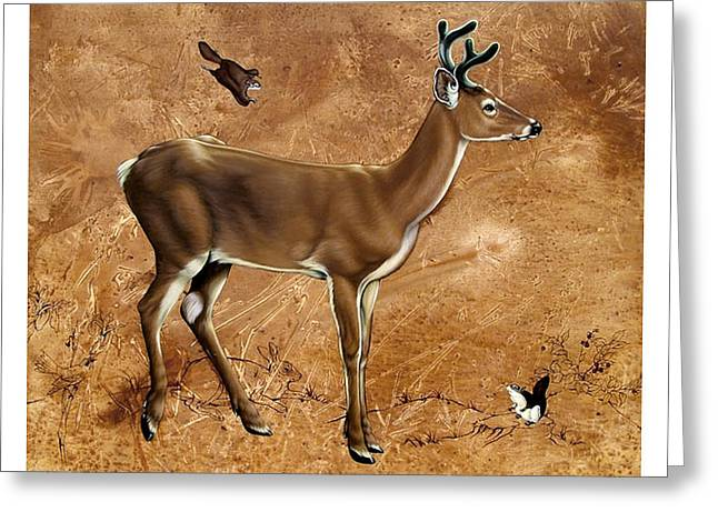 Philip Slagter Paintings Greeting Cards - Whitetail Deer Young Buck Greeting Card by Philip Slagter