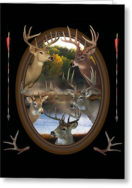 White River Mixed Media Greeting Cards - Whitetail Dreams Greeting Card by Shane Bechler