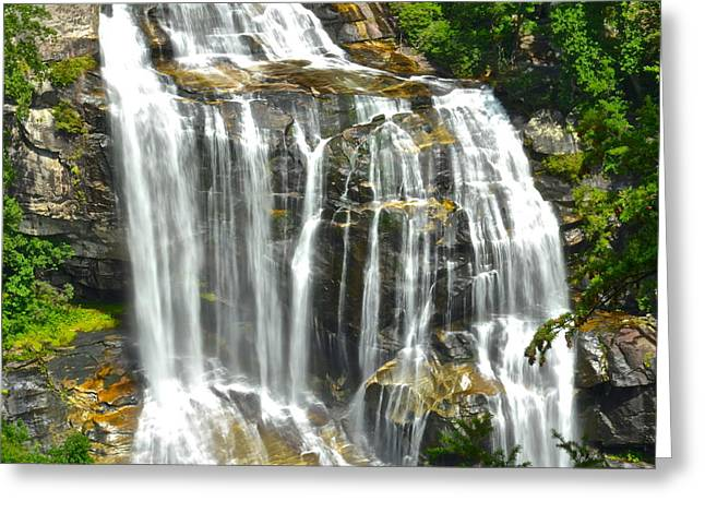 Marvelous View Greeting Cards - Whitewater Falls Greeting Card by Frozen in Time Fine Art Photography