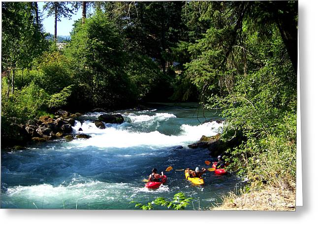 White Salmon River Greeting Cards - Whitewater Kayaks Greeting Card by Charles Robinson