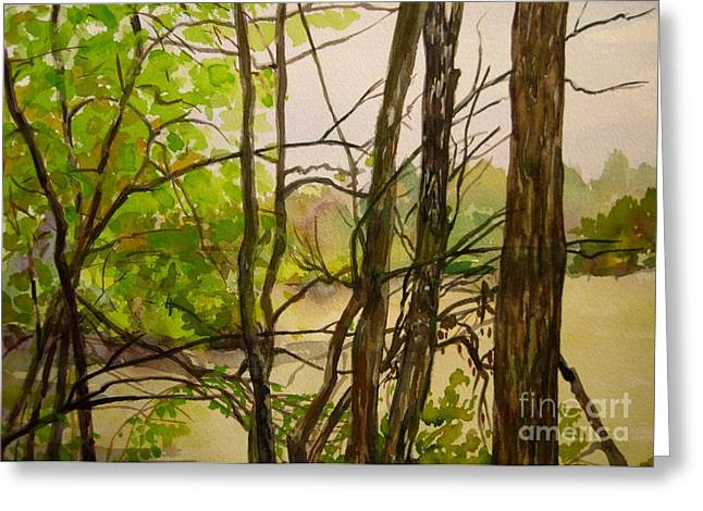 Indiana Rivers Paintings Greeting Cards - Whitewater Memorial State Park Greeting Card by Katrina West