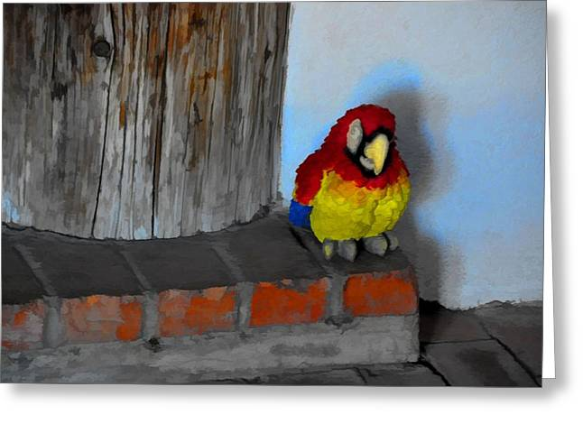 Doorbell Greeting Cards - Who Needs A Doorbell Greeting Card by Jan Amiss Photography