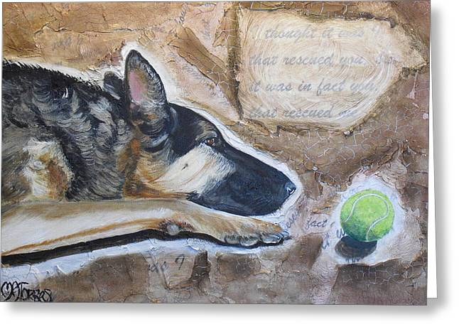 Dog With Tennis Ball Greeting Cards - Who Rescued Who Greeting Card by Melissa Torres