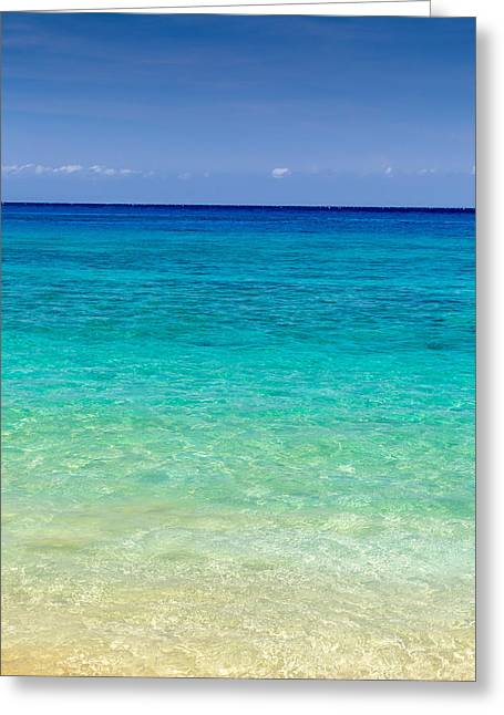 Snorkelling Greeting Cards - Who wants to go for a swim? Greeting Card by Pierre Leclerc Photography