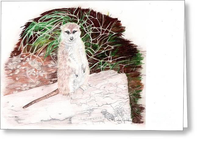 Meerkat Drawings Greeting Cards - Who You Lookin At? Greeting Card by Linda Ginn